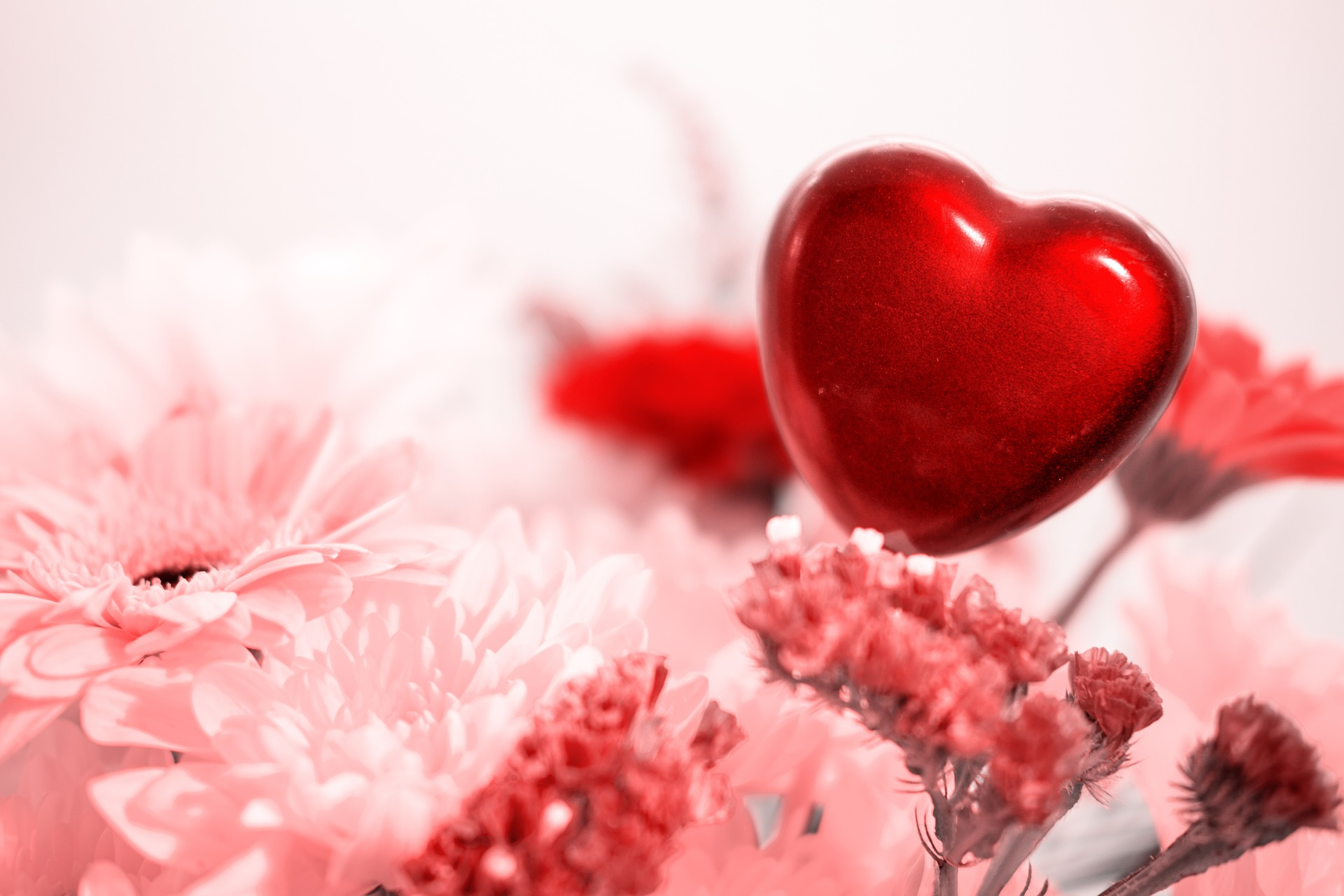heart 5266914 1920