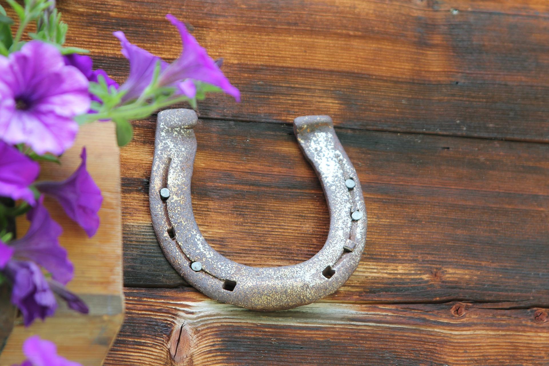 horseshoe 590480 1920