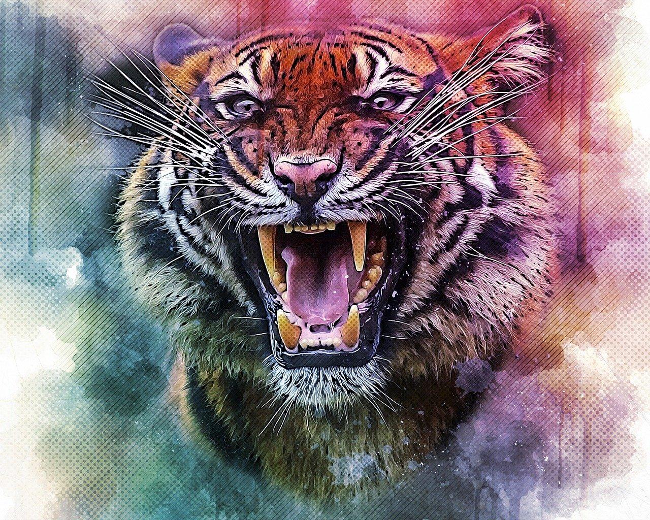 tiger 4843804 1280