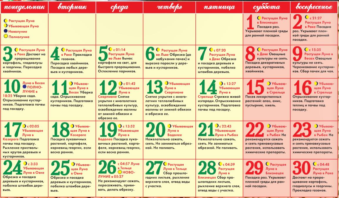 Как организовать экскурсии и праздники
