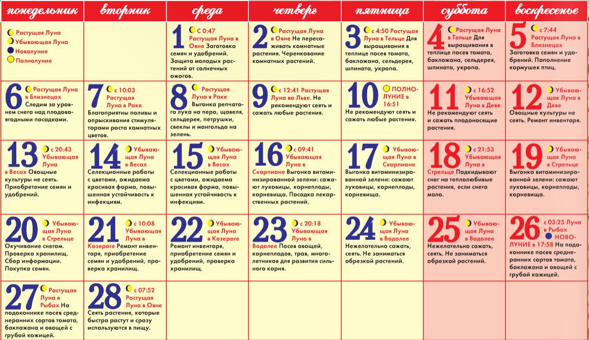 Календарь на 2012 год мужчины