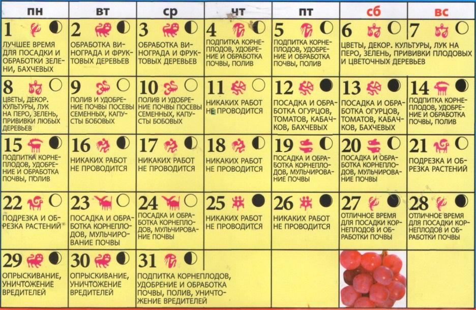 посевной календарь на май 2017 для огородников для приготовления белкового