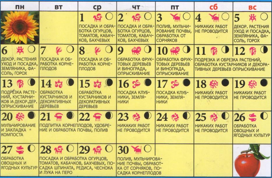 Премьера организация праздников москва