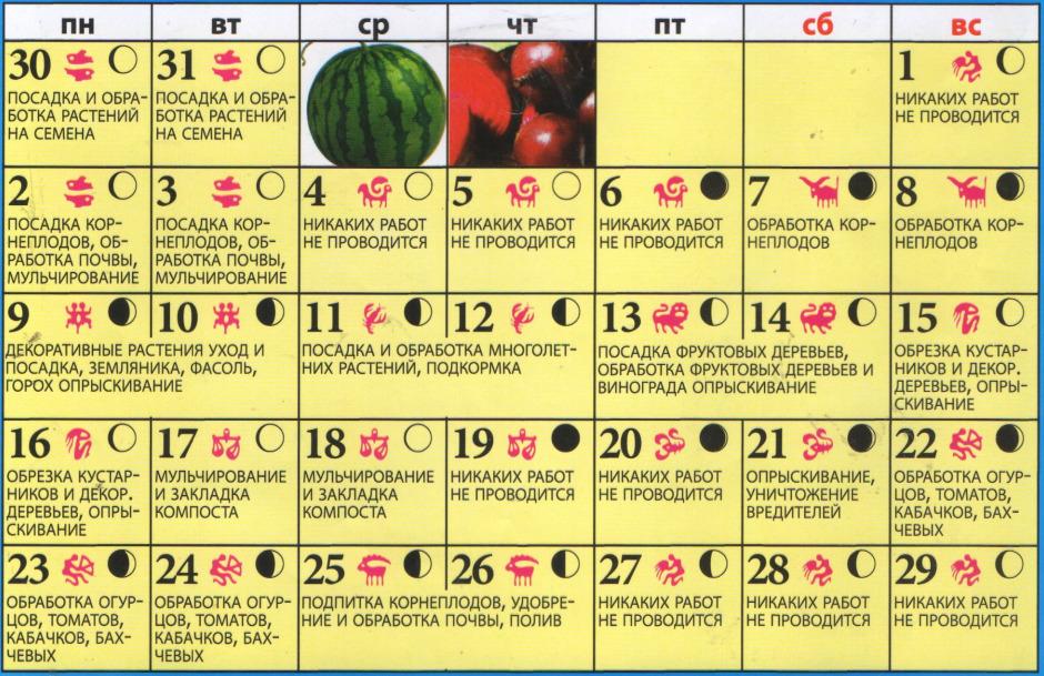 Лунный календарь на 20 декабря
