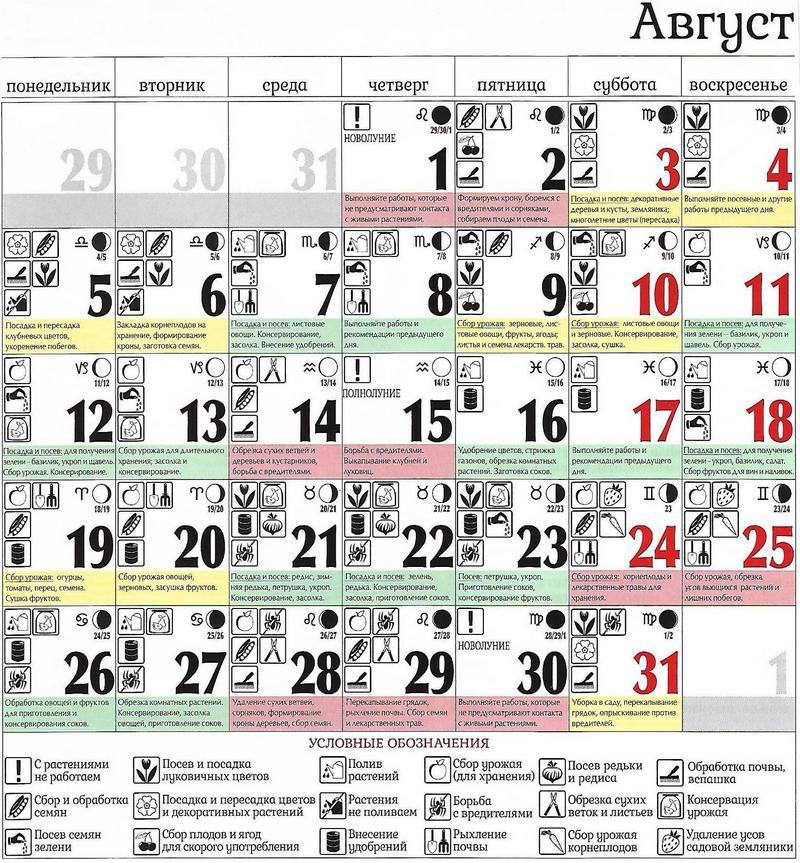 Лунный календарь посевной на февраль 2019 года для садовода и огородника