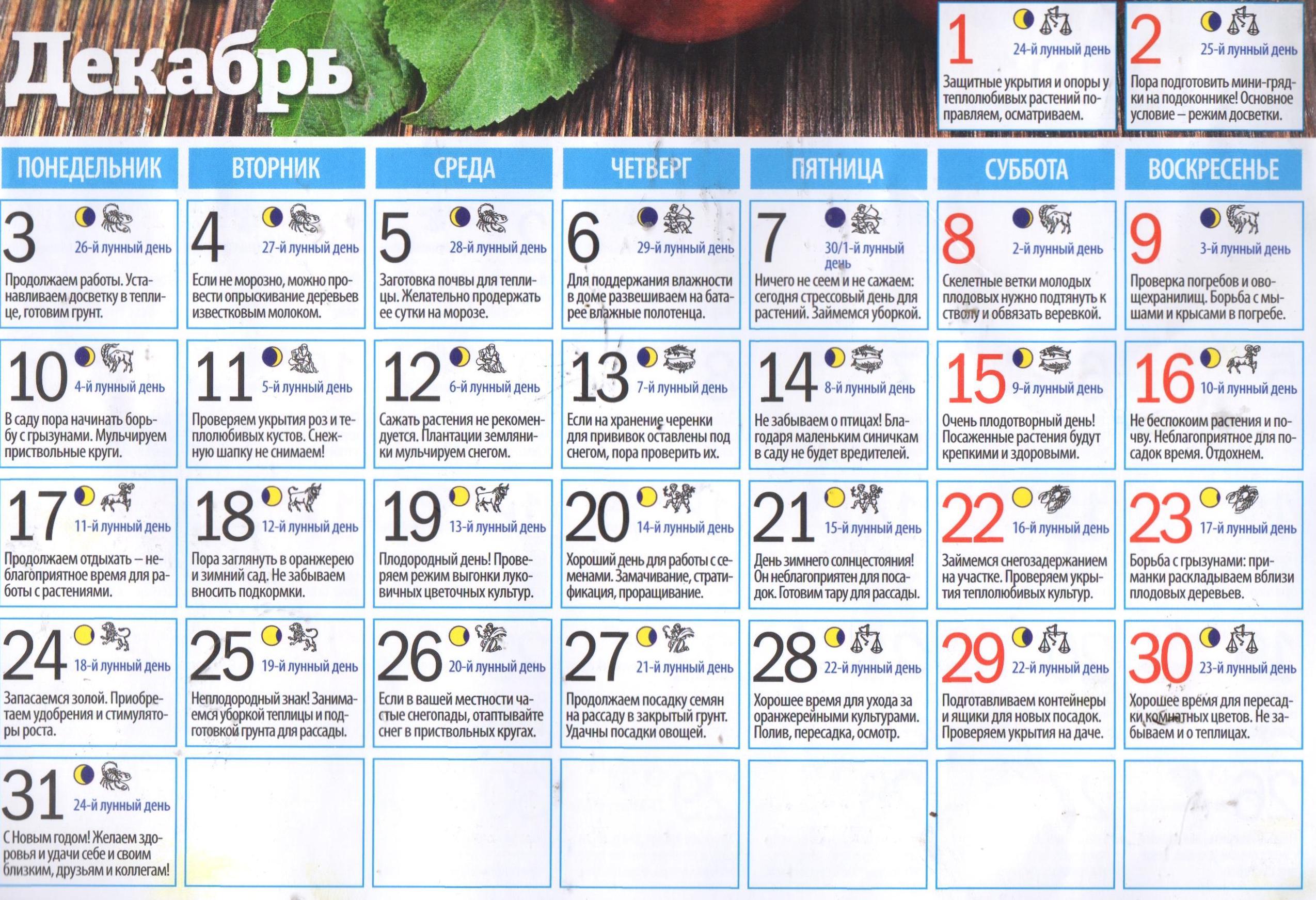Лунный календарь огородника садовода на ноябрь 2018 года