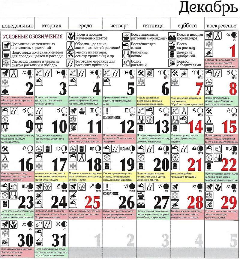 Смотри! Посевной календарь садовода и огородника на 2019 год