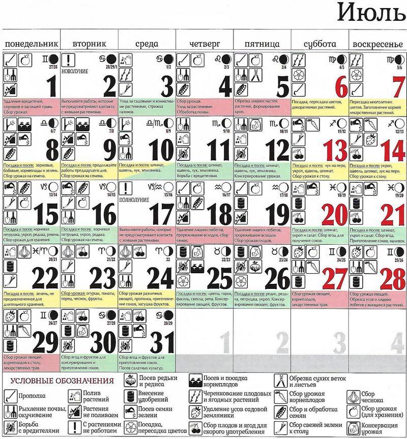 Лунный календарь на июль 2019, полнолуние, новолуние, благоприятные дни для свадьбы, стрижки волос изоражения