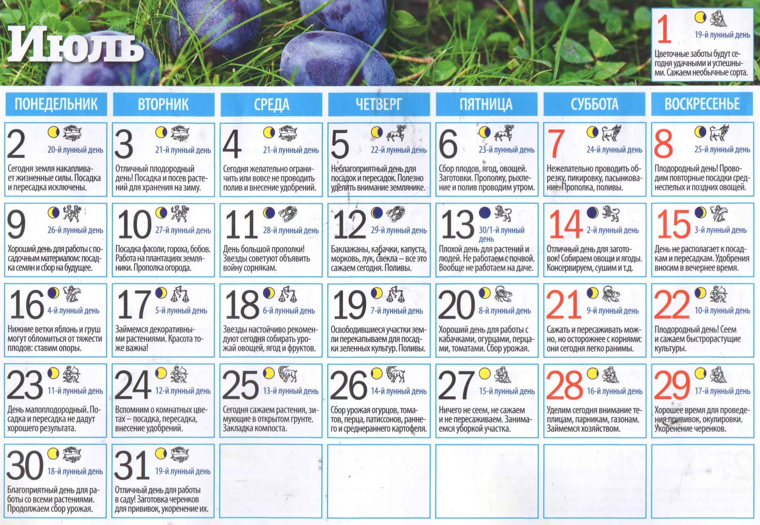 Смотри! Посевной календарь садовода и огородника на 2019 год изоражения