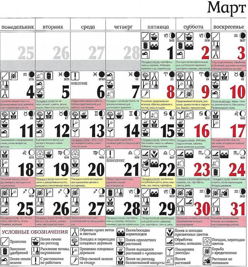Смотри! Посевной календарь садовода и огородника на 2019 год в 2019 году
