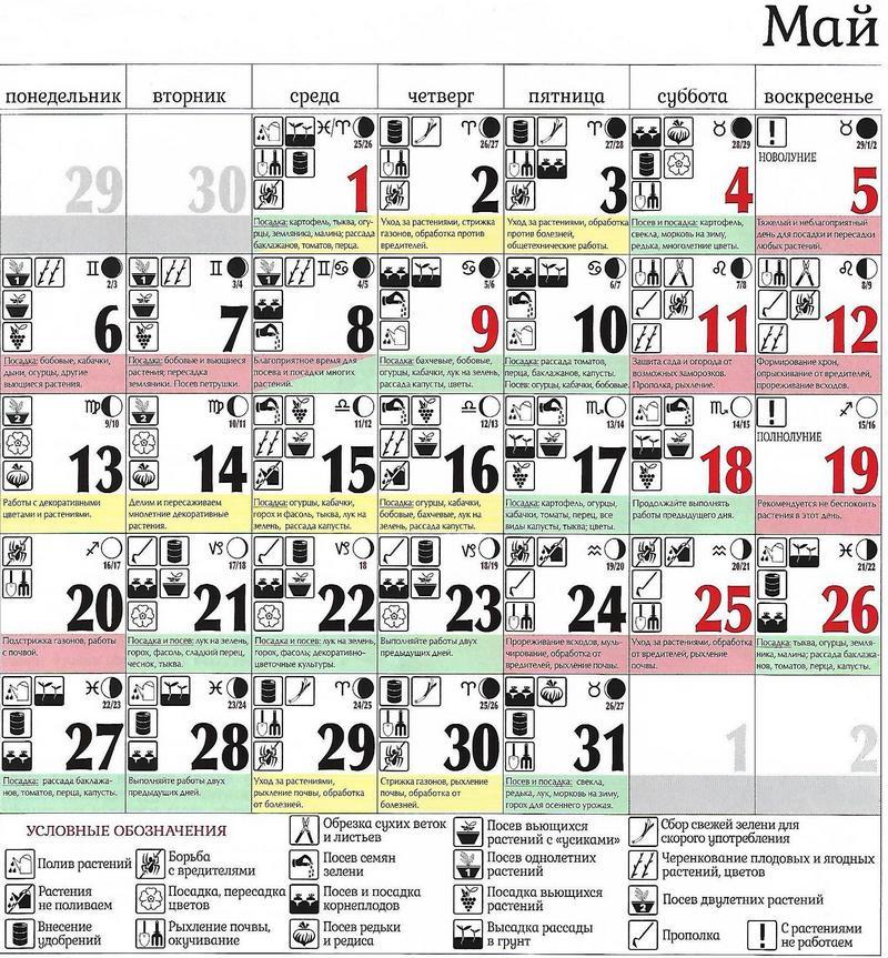 Лунный посевной календарь на 2019 год новые фото