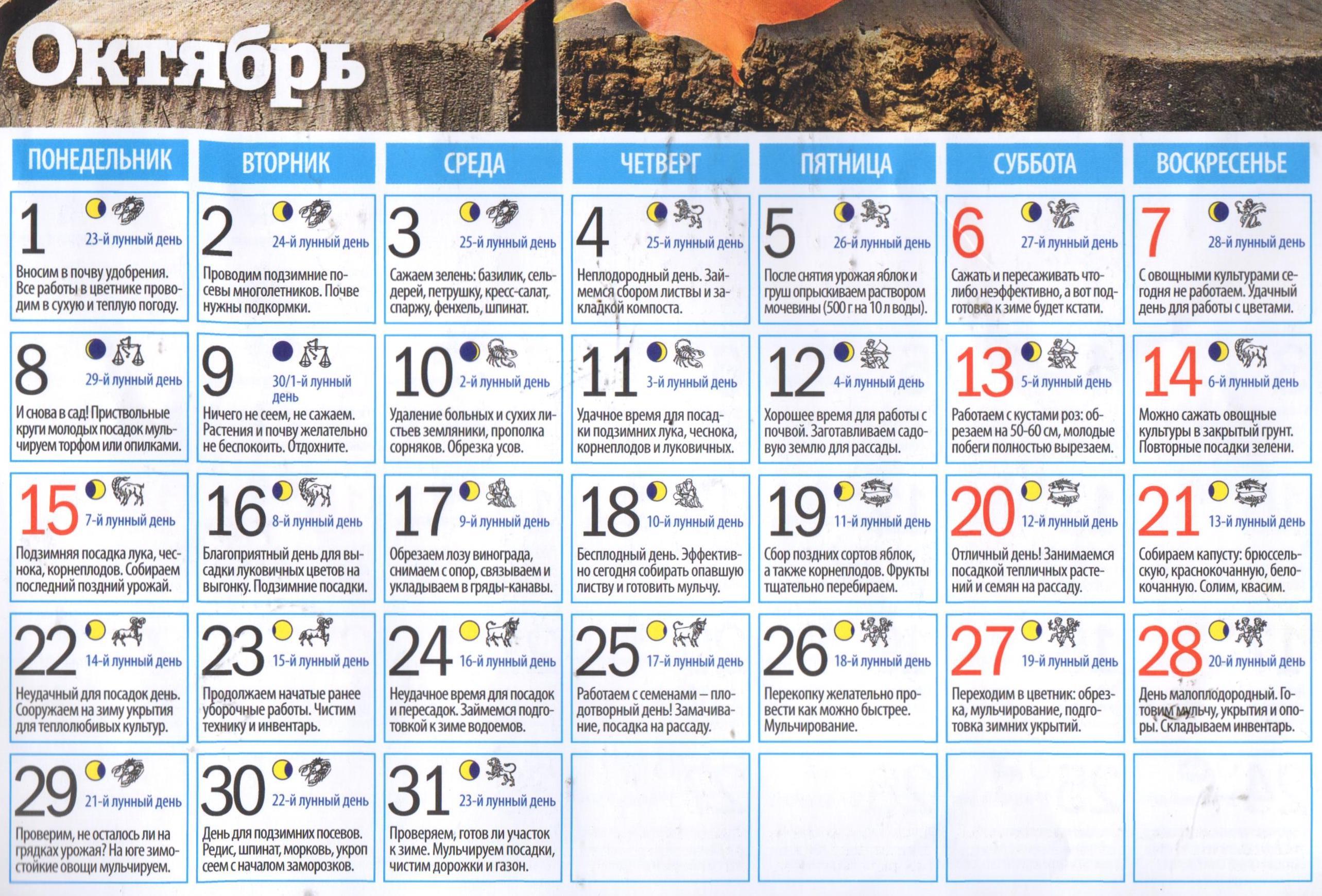 Стрижка волос по лунному календарю на май благоприятные дни